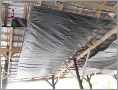 spider tarp